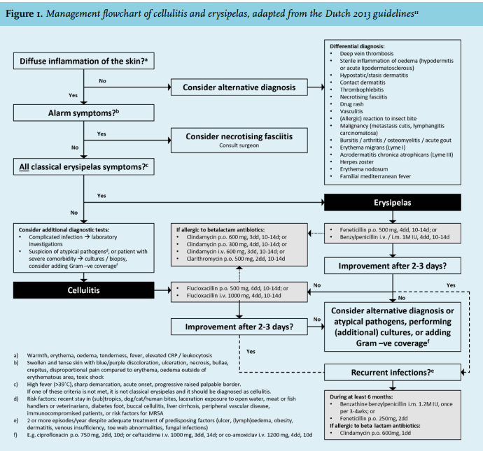 Article: Cellulitis: current insights into pathophysiology and